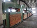 木工業の冷たい出版物機械