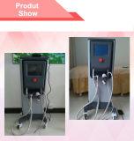 Het in het groot Opheffen van Skinl van de Behandeling van de Apparatuur rf van de Salon van de Schoonheid Thermische (MR16-4S/CE)