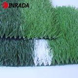 [جينغسو] أنتج ذهبيّة [أنتي-وف] [50مّ] [8800دتإكس] [سكّر&سبورتس] عشب خضراء اصطناعيّة