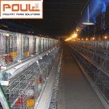 Jaula De Pollo Automatic電池のひよこの若めんどりの鶏のケージシステム