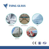Het Ceramische Gehard glas van uitstekende kwaliteit/Geschilderd Glas met Aangepaste Ontwerpen/Grootte