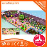 Patio de interior del parque de atracciones del juego de la piscina de la diapositiva y de la bola