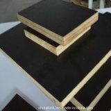 La película de colores hizo frente a la madera contrachapada con los materiales impermeables para la construcción