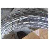 Alambre de púas revestido del PVC del mejor precio de la fuente
