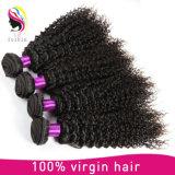 100% 인간적인 브라질 비꼬인 곱슬머리 Remy 머리 E≃ 긴장