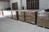 La haute précision a laminé à froid la bobine/acier galvanisé de bande dans la ville de Ningbo