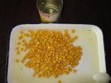Les conserves de maïs sucré avec le meilleur prix