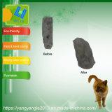 Gatos de tofu de carbón activo con Fast racimos