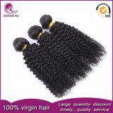 I capelli umani ricci crespi del Virgin dei gruppi peruviani dei capelli tessono la buona qualità