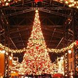 Buntes des Weihnachtenled Zeichenkette-Licht Baum-Licht-LED wasserdicht