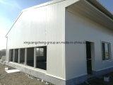 강철 구조물 Prefabricated 비둘기 집