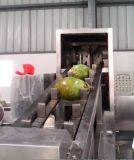 Máquina de corte de coco