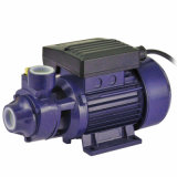 Pump periferico Jkm60-1 (QB60) con CE Approved