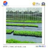 L'usine contre les mauvaises herbes d'alimentation mat/la couverture du sol tissu à mailles