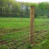 リングロックのシカのアニマル・ファームのための固定結び目の塀