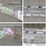 Lumières de bande du véhicule DEL, véhicule flexible lumineux signal lumineux de jour blanc/ambre de DEL de lumière courante de spire