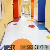 Aula de kindergarten del suelo, decorar el jardín de infantes, la danza piso vinílico de PVC
