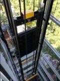 Gearless牽引機械、サポート専門家Seviceが付いている乗客のエレベーター