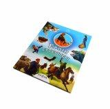 Stampa superiore amichevole del libro di bambini di Eco