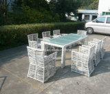 Jardim de alta qualidade Jardim Grande retângulo PE-Rattan Cadeira de jantar com mesa de retângulo (YT605)