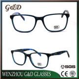Form-Art-Produkt-Großverkauf-Aktien Eyewear Brille-optischer Azetat-Rahmen