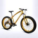 Bon prix Vélo de montagne avec frein à disque 26