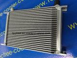 Dispositivo di raffreddamento universale dell'olio per motori dell'alluminio 25rows