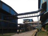 Bio-Fuel Suikerriet, Boiler van de Biomassa van de Bagasse de Industriële