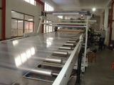 PE van pp PS Machines van de Uitdrijving van de Bladen van het Huisdier PMMA EVA de Plastic, de Lijn van de Extruder