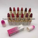 Nouvelle arrivée Mac 12 couleurs rouge à lèvres rouge à lèvres mat imperméable