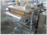 La DPP-250 Al-Al/Al PVC Máquina de embalaje blister