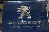 Профессиональный изготовленный на заказ знак логоса автомобиля логоса автомобиля высокого качества 3D акриловый/СИД акриловый автоматический