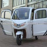 На заводе закрыт электрический Auto Smart 60V 1000W мини-Car с 3 сиденьями