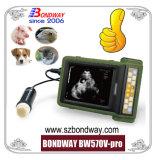 Scanner de ultra-som portáteis, sistema de ultra-som veterinários, máquina de ultra-sons de diagnóstico veterinário, ultra-sonografia, suprimento médico