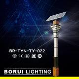 Br-Tyn-TY-022 15W de l'éclairage solaire de jardin
