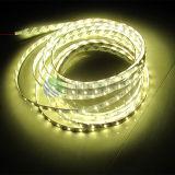 IP65는 고품질을%s 2835 60LEDs LED 리본 빛을 방수 처리한다