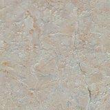 De Ceramische Muur van het Bouwmateriaal en Tegel 300X600mm 68312 van de Vloer