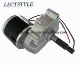 24V 250W Power Wheelchair Motors mit Electromagnetic Function
