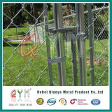 Jardín cercado de la cadena de metal y el portón de hierro forjado Coutyard