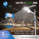 Réverbère solaire extérieur du détecteur de mouvement DEL pour l'Afrique