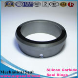 Silicone Carbide Sealing Ceramic (RBSIC e SSIC) M7n G9 L Da Type