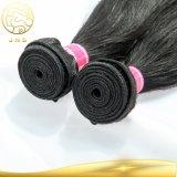 安い卸し売りRemyのバージンの未加工自然な女性の人間のマレーシアの毛