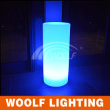 LED Round Pillar Outdoor Christmas Light