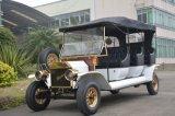 행락지 8 사람 골프 차량 관광 전기 고전적인 차량