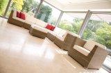 Insieme esterno del sofà della mobilia, sofà di Futniture del giardino, sofà della mobilia del patio, sofà del rattan, sofà di vimini