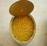 Venta caliente de cultivo fresco de calidad Premium dulce enlatado callos
