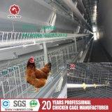 Het automatische Frame van H galvaniseerde Apparatuur van de Landbouwbedrijven van het Gevogelte van de Kip van de Laag van het Staal de hoog-Hoogste