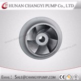 Bomba de água centrífuga da alimentação da caldeira da bomba de Hunan Changyi