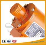 Dispositivo de seguridad del freno de velocidad del límite Saj02 Saj08 Saj20 Saj30 Saj40 Saj50 Saj60 Saj65 Saj70 para el alzamiento del elevador de la construcción