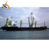 Multi imbarcazione di contenitore del carico di scopo del TUE